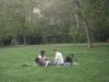 tavaszi-piknik